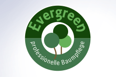 Evergreen Baumpflege