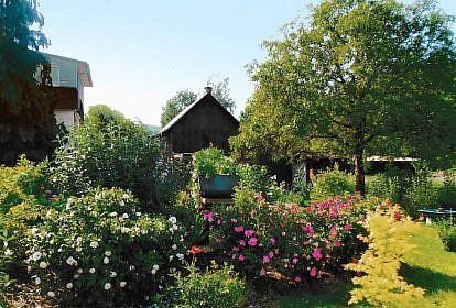 Bretzfeld-Geddelsbach, Garten Andres-Frey